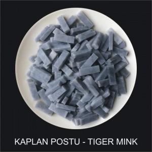 Kaplan Postu